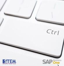 Change Field Name using Ctrl + Double Click in SAP Business One - SAP Business One Tips