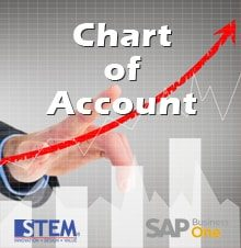 Chart Of Account in SAP Business One version 9.2 up to 10 Levels - SAP Business One Tips