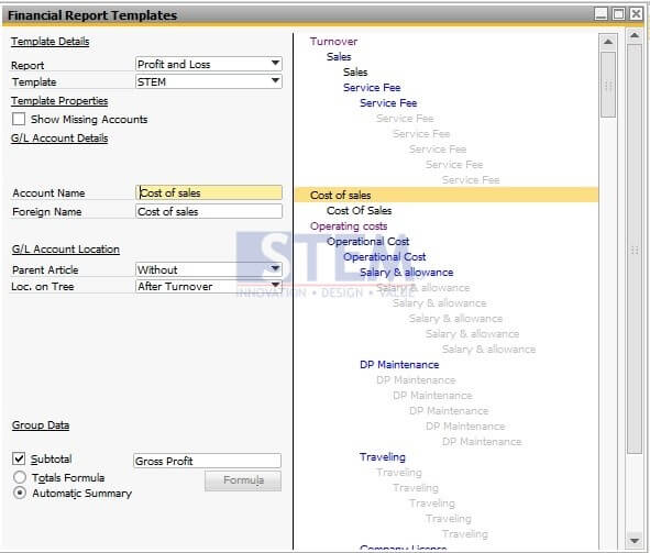 Create Your Own Financial Statement Template | Sap Business One Tips