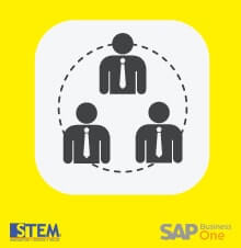 How to Group User Defined Fields (UDF) in SAP Business One - SAP