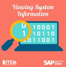 Viewing System Information in SAP Business One - SAP Business One Tips