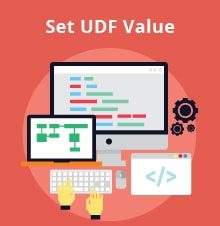 Alternative Way to Set UDF Value in Matrix for SAP Business One - SAP Business One Tips