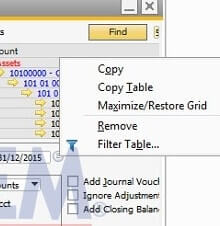 How to use Maximize Restore Grid in SAP Business One Financial Report - SAP Business One Tips