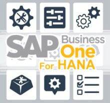 How to Customize Enterprise Search in SAP Business ONE Version for HANA 9.1 and Later