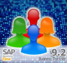 New Business Partner Data Ownership in SAP Business One 9.2