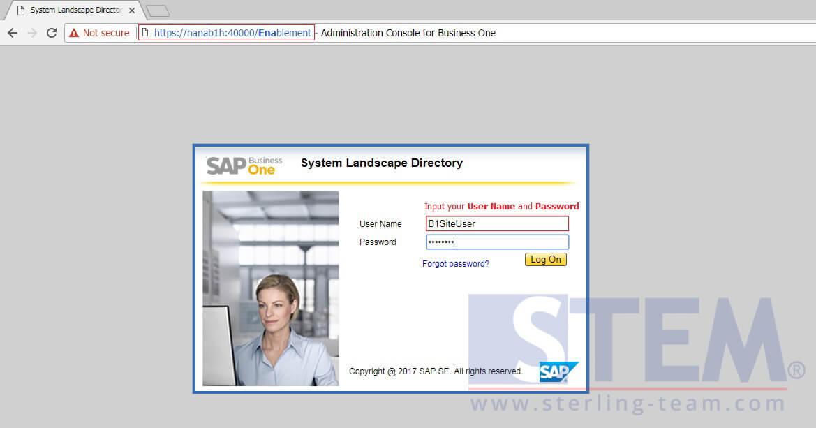 SAP_BusinessOne_Tips-STEM-Activate Pervasive Analytics on HANA_01