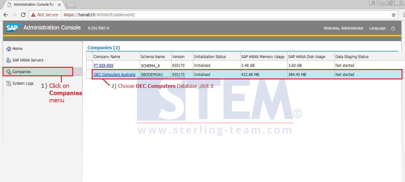 SAP_BusinessOne_Tips-STEM-Activate Pervasive Analytics on HANA_02