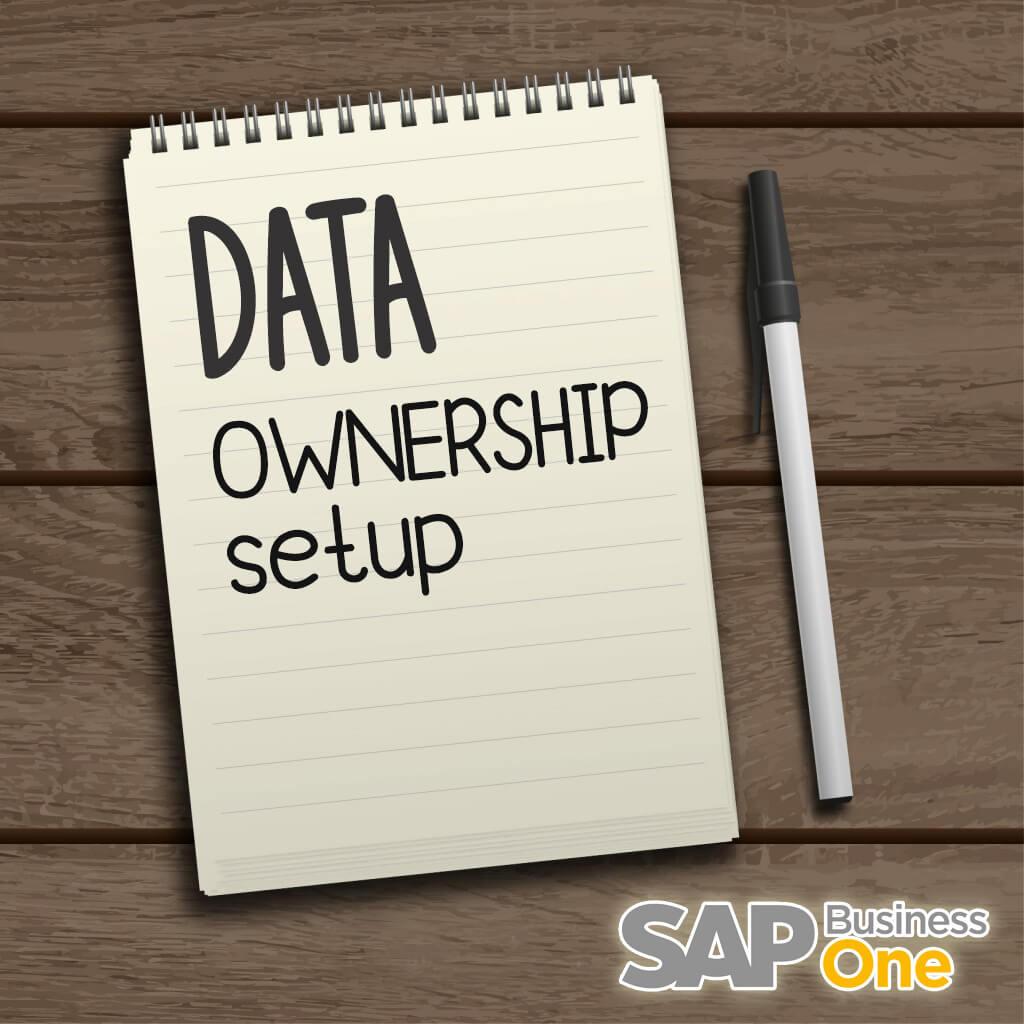 Setup Data Ownership on SAP B1