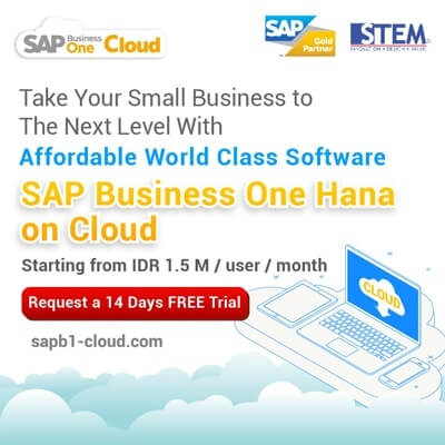 STEM - SAP Business One Hana on Cloud