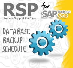 RSP for Database Backup Schedule