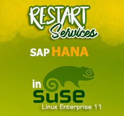 Restart SAP HANA related services in SuSE Linux Enterprise 11 SP 4 OS with PuTTy