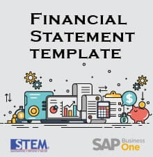 Create Your Own Financial Statement Template on SAP Business One - SAP Business One Tips