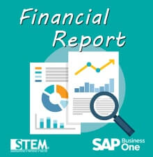 You can have financial report before and after audit adjustment in SAP Business One - SAP Business One Tips