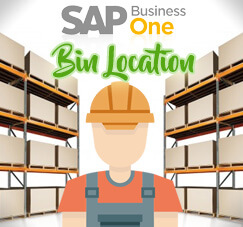 Bin Location Feature on SAP B1