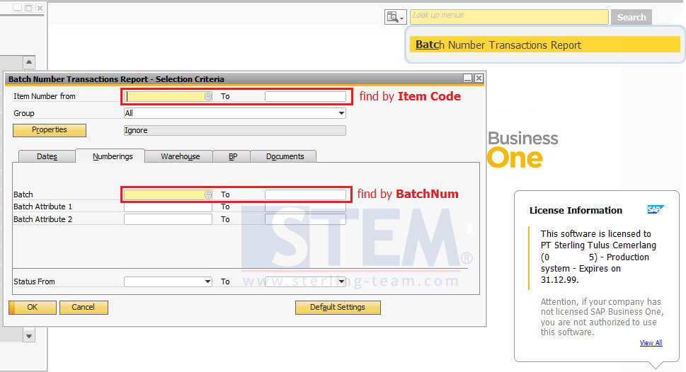 Find Your Allocated Batch   SAP Business One Indonesia Tips