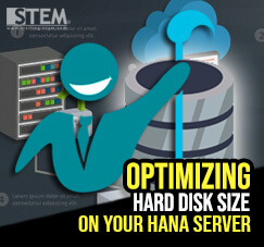 SAP Business One Tips - STEM SAP Gold Partner Indonesia - Optimizing Hard Disk Size on Your HANA Server