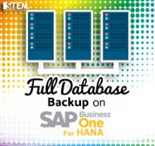 SAP Business One Tips - STEM SAP Gold Partner Indonesia - Full Backup Environment with HANA Studio