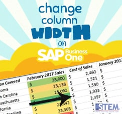 SAP Business One Tips - STEM SAP Gold Partner Indonesia - Change Your Column Width on SAP Business One