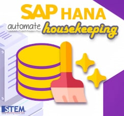 HANA Housekeeping Using Python Script | SAP Business One