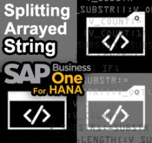 SAP Business One Tips - STEM SAP Gold Partner Indonesia - Splitting Arrayed String into Table Function on HANA Database