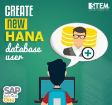 Create New HANA Database User