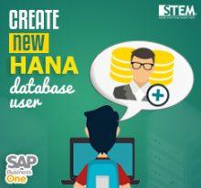 Create New HANA Database User