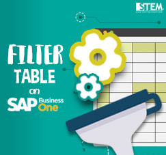 SAP Business One Tips - STEM SAP Gold Partner Indonesia - Using Filter Method on SAP B1