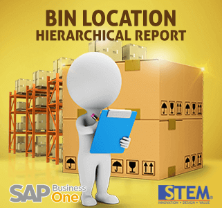 SAP Business One Tips Bin Location Hierarchical Report