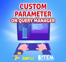 SAP Business One Tips Custom Parameter on Query Manager