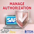SAP Business One Tips - Manage Authorization
