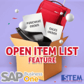 SAP Business One Tips Open Item List