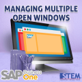SAP Business One Manage Multiple Open Windows