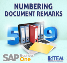 SAP Business One Numbering Document Remarks