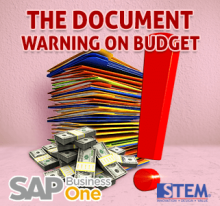 SAP Business One Tips The Document Warning on Budget