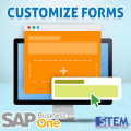 SAP Business One Tips Customize Forms with UI