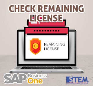 SAP Business One Tips Check Remaining License