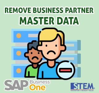 SAP Business One Tips Remove Business Partner Master Data