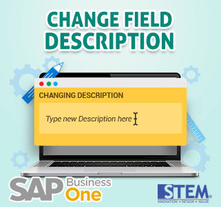 SAP Business One Tips Change Field Description