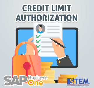 SAP Business One Tips Credit Limit Authorization