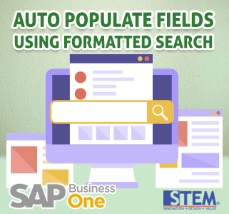 SAP Business One Tips Auto Populate Fields Using Search