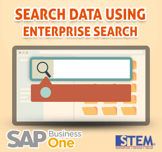 SAP Business One Tips Search Data using Enterprise