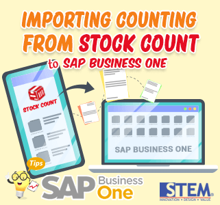 SAP Business One Importing Counting