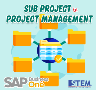 SAP Business One Sub Project