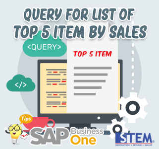 SAP Business One Tips Query Top Sales