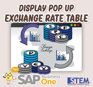 SAP Business One Indonesia Tips Display Popup Exchange Rate Table