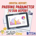SAP-Business-One-Tips-Crystal-Report-Passing-Parameter-to-Sub-Report