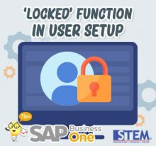 SAP Busines One Indonesia Tips Locked Function in User Setup