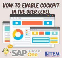 SAP Business One Tips How to Enable Cockpit Features