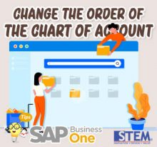 SAP Business One Tips Indonesia Change The Order of The Chart of Account