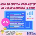 SAP Business One Tips Indonesia Custom Parameter on Query Manager on HANA